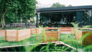 Urban Farming Karlsplatz